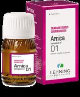 Lehning Arnica Complexe N° 1 Solution Buvable En Gouttes Fl/30ml à TOUCY