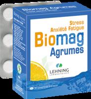 Lehning Biomag Comprimés à Croquer Agrumes B/90 à TOUCY