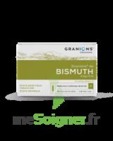 Granions De Bismuth 2 Mg/2 Ml S Buv 10amp/2ml à TOUCY