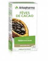 Arkogélules Cacao Gélules Fl/45 à TOUCY