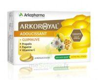 Arkoroyal Propolis Pastilles Adoucissante Gorge Guimauve Miel Citron B/24 à TOUCY