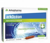Arkocean Magnesium Marin Solution buvable caramel 20 Ampoules/10ml à TOUCY