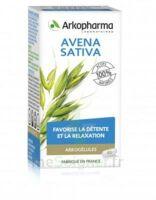 Arkogélules Avena Sativa Gélules Fl/45 à TOUCY