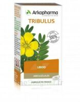 Arkogélules Tribulus Gélules Fl/45 à TOUCY