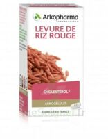 Arkogélules Levure de riz rouge Gélules Fl/45 à TOUCY