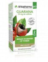 Arkogélules Guarana Bio Gélules Fl/45 à TOUCY