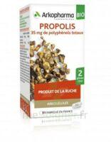 Arkogélules Propolis Bio Gélules Fl/45 à TOUCY