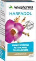 ARKOGELULES HARPAGOPHYTON Gélules Fl/150 à TOUCY