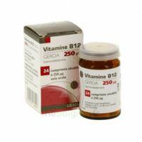 Vitamine B12 Gerda 250 Microgrammes, Comprimé Sécable à TOUCY
