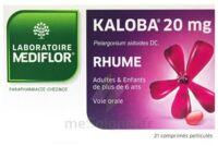 KALOBA 20 mg Comprimé pelliculé Plq/21 à TOUCY