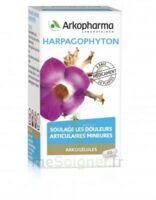 Arkogelules Harpagophyton Gélules Fl/45 à TOUCY