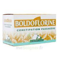 BOLDOFLORINE, mélange de plantes pour tisane en sachet-dose B/24 à TOUCY