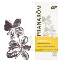 Pranarom Huile Végétale Bio Calophylle 50ml à TOUCY