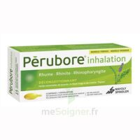 Perubore Caps Inhalation Par Vapeur Inhalation Plq/15 à TOUCY