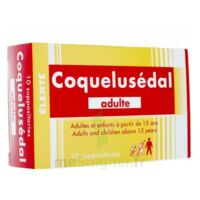COQUELUSEDAL ADULTES, suppositoire à TOUCY