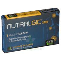 Nutralgic Comprimés Inflammations B/10 à TOUCY