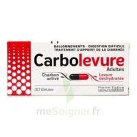 CARBOLEVURE Gélules adulte Plq/30 à TOUCY