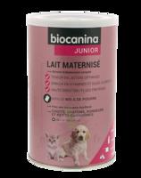 Biocanina Lait Poudre Maternisé B/400g à TOUCY
