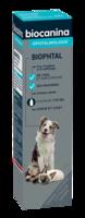 Biophtal Solution externe 125ml à TOUCY