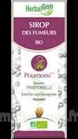 Herbalgem Sirop Bio Des Fumeurs 150ml à TOUCY