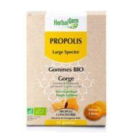 Herbalgem Propolis large spectre Gomme bio B/24 à TOUCY