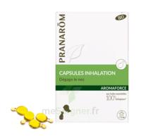 Aromaforce Caps Inhalation Bio B/15 à TOUCY