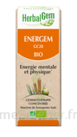Herbalgem Energem Solution buvable bio Fl cpte-gttes/30ml à TOUCY