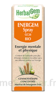 Herbalgem Energem Solution buvable bio Spray/15ml à TOUCY