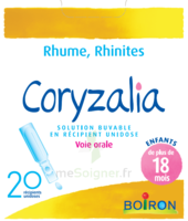 Boiron Coryzalia Solution buvable unidose B/20 à TOUCY