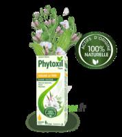 Phytoxil Toux Sans Sucre Sirop Adulte Enfant +2 Ans Fl/120ml à TOUCY